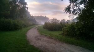 Meadow 2a